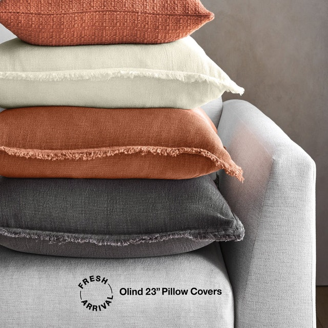 """Crate & Barrel Olind 23"""" Pillow Covers 1"""