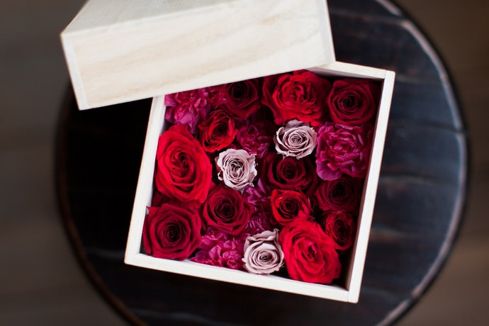 Preserved Flowers Are Pricey Yet Worth the Splurge