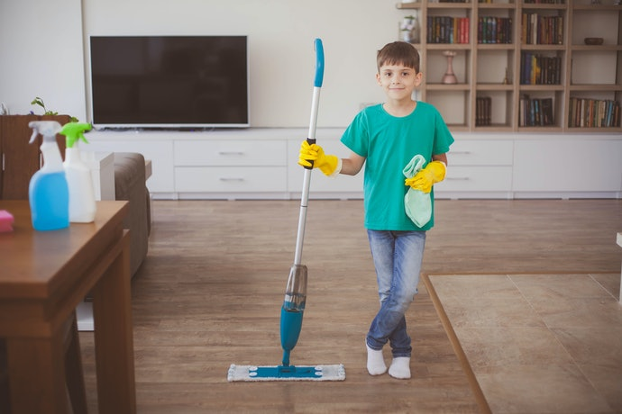 Select a Steam Cleaner with Some Bonus Features