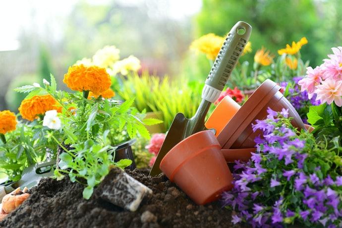 Liven Up Your Home With DIY Ornamental Kits