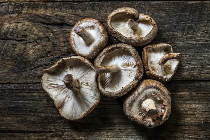 Stock Up on Nutritious Mushrooms by Growing Your Own