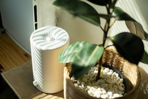 Let's Clear the Air by Removing Impurities with a Purifier