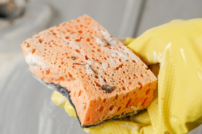 Sponges are Less Hygienic