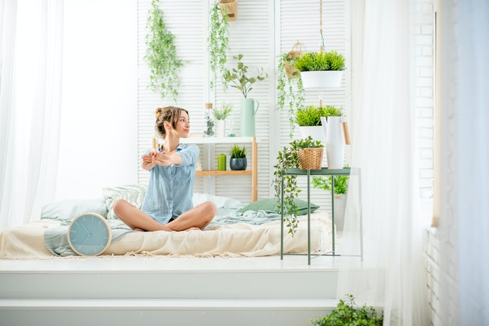 Air-Purifying Indoor Plants to the Rescue