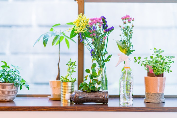 Beautify Your Homes With These Visually Appealing Ornamentals
