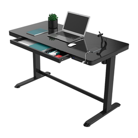 10 Best Standing Desks in the Philippines 2021(Ofix, Flexispot, and More) 4