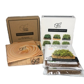 Top 10 Best Grow Kits in the Philippines 2020 5