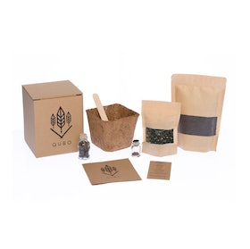 Top 10 Best Grow Kits in the Philippines 2020 2