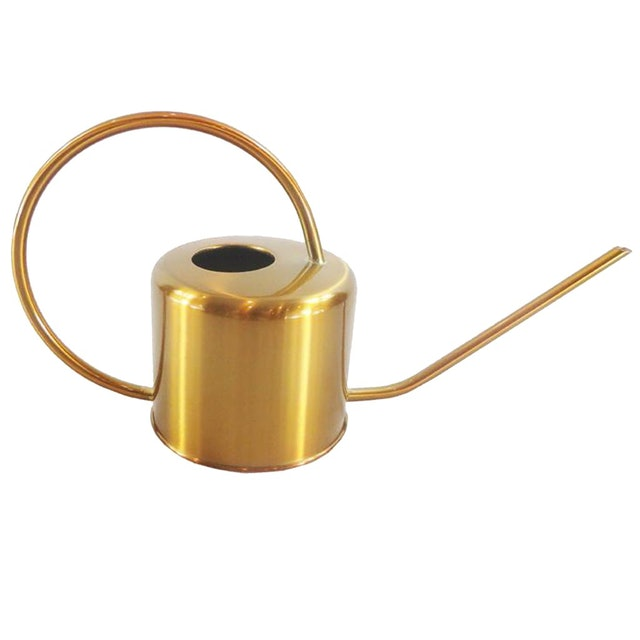 No Brand Stainless Steel Golden Long Spout Watering Can  1