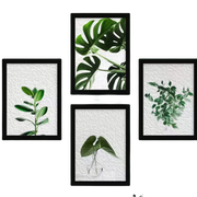 10 Best Decorative Frames for Walls in the Philippines 2021
