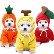 Top 10 Best Dog Clothes in the Philippines 2021