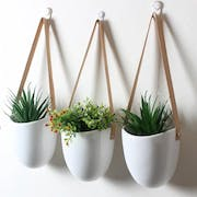 10 Best Wall Planters in the Philippines 2021 (Pots for Plants PH, Ecopots, and More)